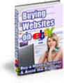 Buying Websites on eBay (MRR)