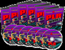 Thumbnail The PLR For Newbies Video Series (MRR)