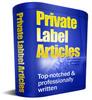 Thumbnail 10 Best Airfare Deals PLR Articles