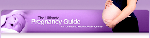 Product picture The Ultimate Pregnancy Guide (MRR)